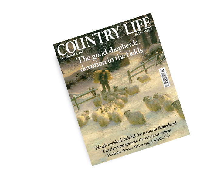 Country Life | Get Your FREE Issue Right Now